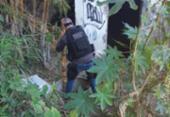 Ossada encontrada em Belford Roxo não é de meninos desaparecidos | Foto: Divulgação
