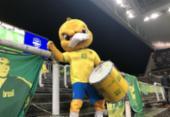 Brasil e Argentina em São Paulo poderá receber até 12.000 torcedores | Foto: