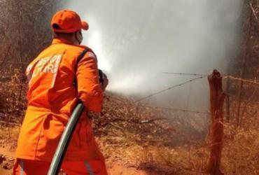 Bombeiros conseguem vencer incêndio após 12 dias de fogo ativo em Ibotirama