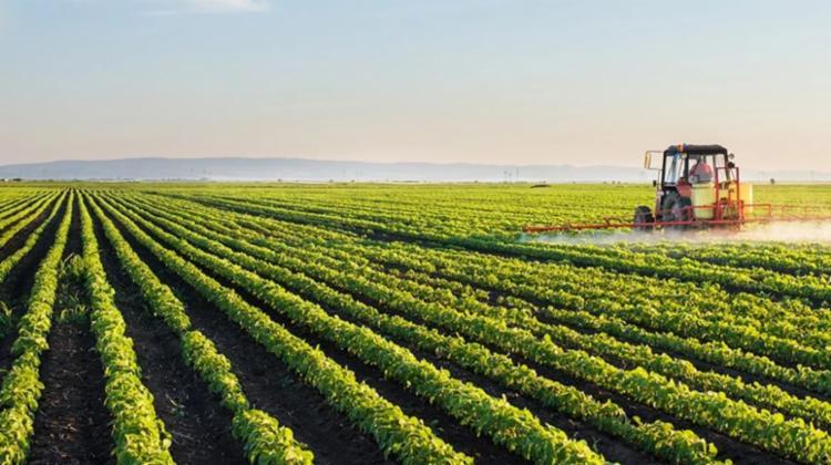 Programas devem contribuir para o agronegócio   Foto: Reprodução   Ilustrativa - Foto: Reprodução   Ilustrativa