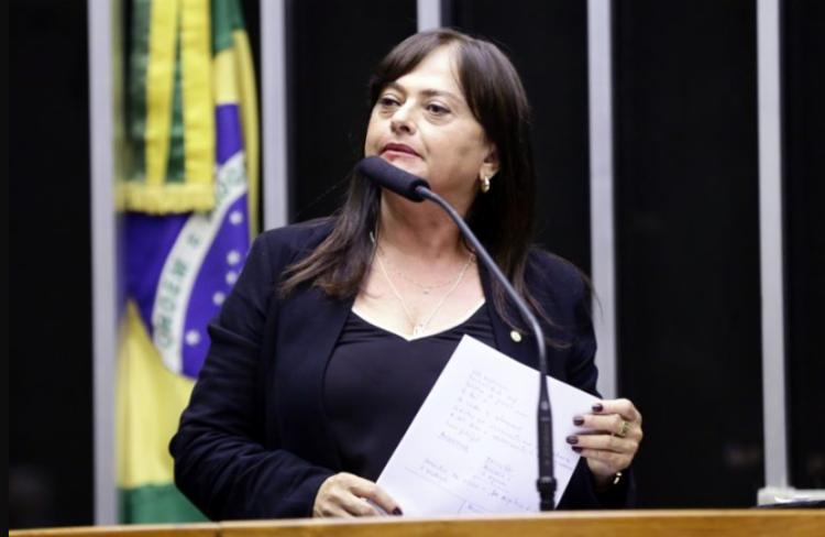 Deputada federal do PCdoB prometeu que a oposição agirá para tornar a matéria inconstitucional - Foto: Agência Câmara