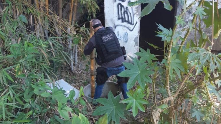 Polícia Civil concluiu que o material encontrado é de origem animal | Foto: Divulgação - Foto: Divulgação