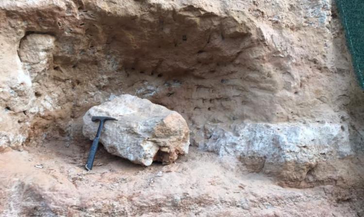 Peça pode ser de espécie que habitou a região há 65 milhões de anos | Foto: Divulgação | Entrevias - Foto: Divulgação | Entrevias
