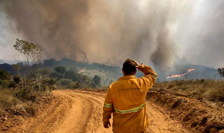 Ontem as chamas já haviam consumido mais da metade da vegetação   Foto: Reprodução   Fotos Públicas - Foto: Reprodução   Fotos Públicas