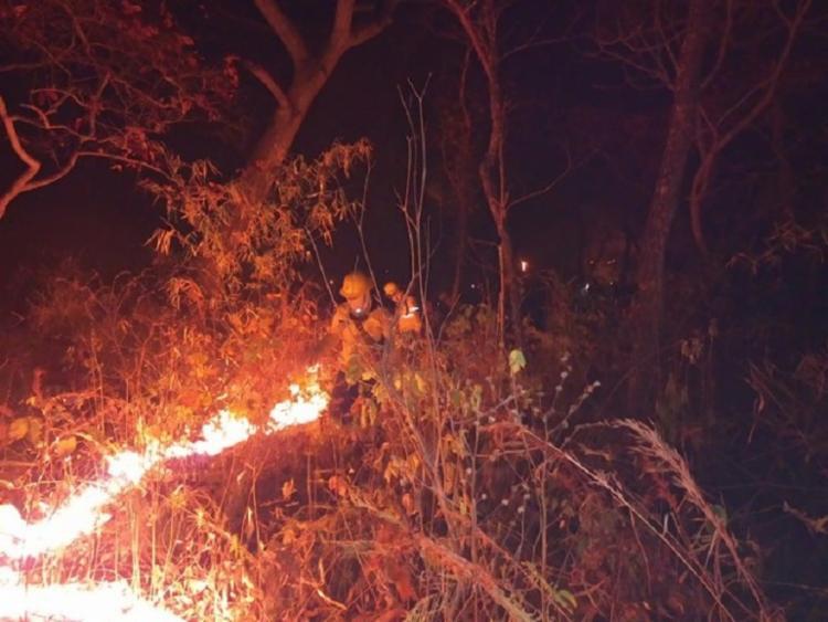 O Corpo de Bombeiros informou que há cinco operações de combate a incêndios florestais no Mato Grosso do Sul   Foto: Divulgação   Corpo de Bombeiros - Foto: Divulgação   Corpo de Bombeiros