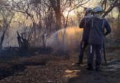 Incêndio atinge área de caatinga em Guanambi   GBM/Divulgação