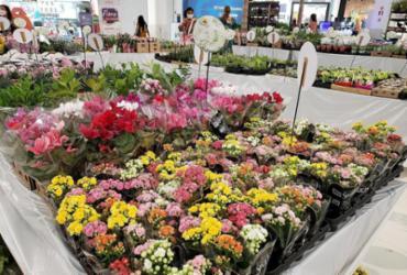 Negócio de flores tem novas lojas e combos | Shopping Bela Vista | Divulgação