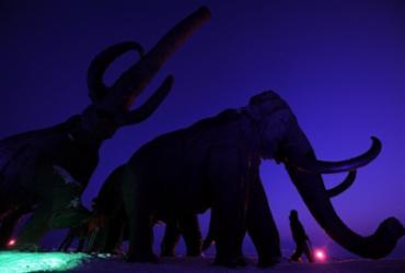 Empresa vai investir R$ 78 milhões para tentar trazer mamute extinto de volta à vida |