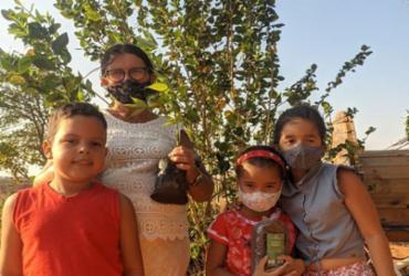 Sertão Produtivo: agricultores familiares participam de ação que incentiva o plantio de árvores