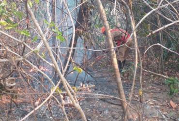 Fogo na Chapada dos Veadeiros afeta 14 mil hectares | Arquivo | Corpo de Bombeiros de Goiás