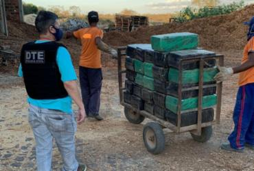 Quase 3 toneladas de maconha são incineradas em Vitória da Conquista