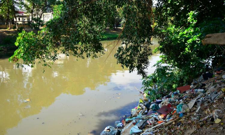 O Dia Mundial da Limpeza é uma ação social global destinada ao combate de toneladas de lixo descartadas de modo incorreto no meio ambiente | Foto: Tomaz Silva | Agência Brasil - Foto: Tomaz Silva | Agência Brasil