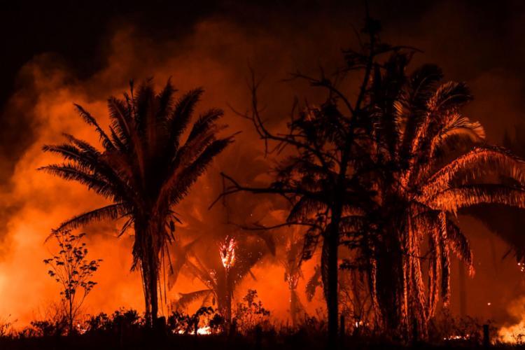 Floresta amazônica sofre incêndios cada vez mais frequentes, de acordo com o estudo   Foto: NELSON ALMEIDA   AFP - Foto: NELSON ALMEIDA / AFP