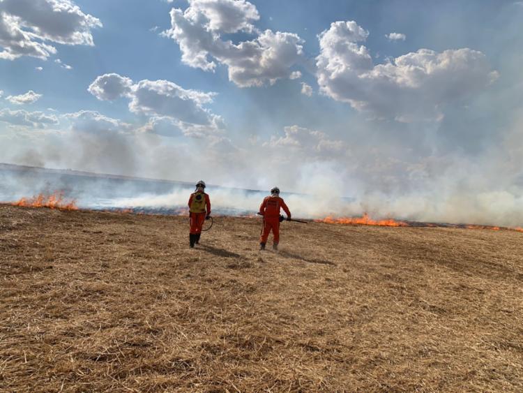 Oeste baiano é a região com mais registro de focos de incêndio   Foto: Divulgação   CBMBA - Foto: Divulgação   CBMBA