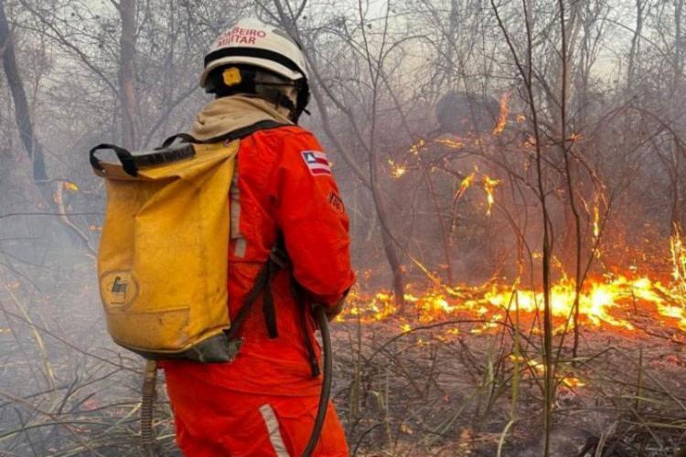 O Corpo de Bombeiro fez a limpeza ao redor das áreas atingidas para evitar novas queimadas. - Foto: CBMBA/Divulgação