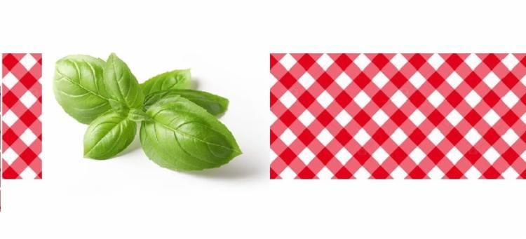 Segundo especialistas a bruschetta tem origem nas regiões italianas de Lazio, Abruzzo e da Toscana