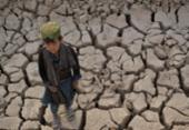 Mais da metade da população afegã está à beira da crise alimentar | Foto: HOSHANG HASHIMI / AFP