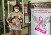 Outubro Rosa Pet alerta para prevenção ao câncer de mama | Foto: Foto: Rafaela Araújo / Ag. A Tarde