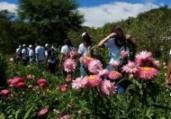 Projeto Agro Jovem qualifica mão de obra | Divulgação | ASCOM-Prefeitura Municipal de Piritiba