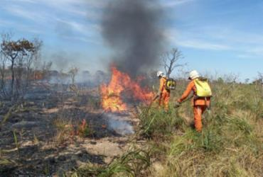 Bombeiros e voluntários seguem no combate a incêndios florestais na Bahia | Divulgação | CBM-BA