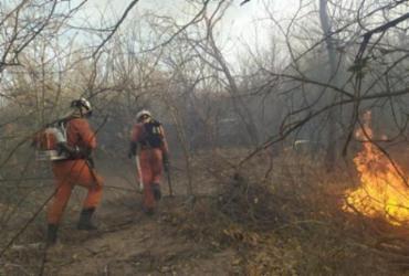 Bombeiros seguem no combate aos incêndios florestais na Bahia | Divulgação | SSP