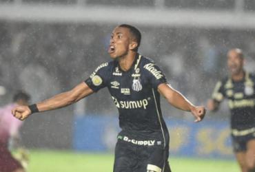 Santos derrota Fluminense e deixa o Z-4 do Brasileirão | Ivan Storti | Santos FC
