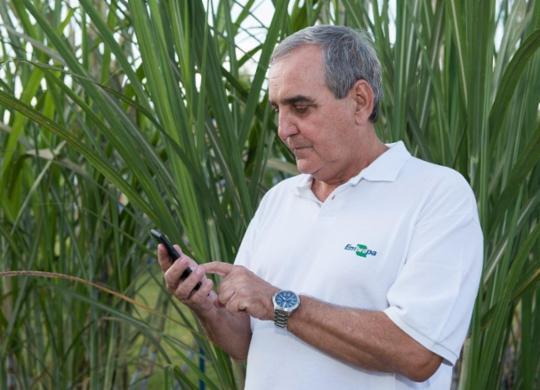 Tecnologia ajuda produtores a minimizarem danos causados pela Covid | Lilian Alves / Divulgação