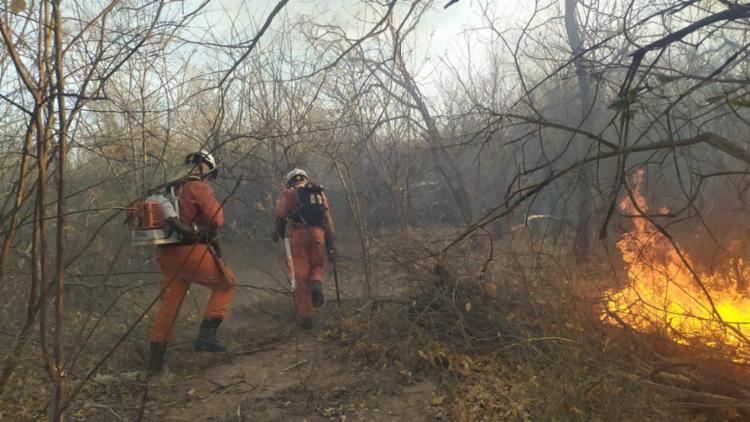 Foco dos incêndios foram controlados e maior parte dos municípios segue em monitoramento | Foto: Divulgação | CBMBA - Foto: Divulgação | CBMBA